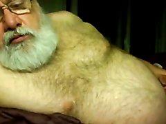 Silver Daddy Bear