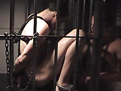 Sexy boy in the cage