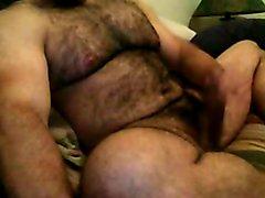 HAIRY BEEFY BEAR