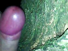Solo masturbation in the woods