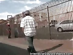 Caucasian And Latino Gangster Cock Sucking