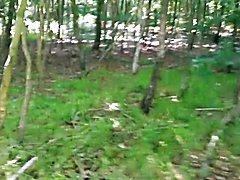 ...neulich im Wald.....