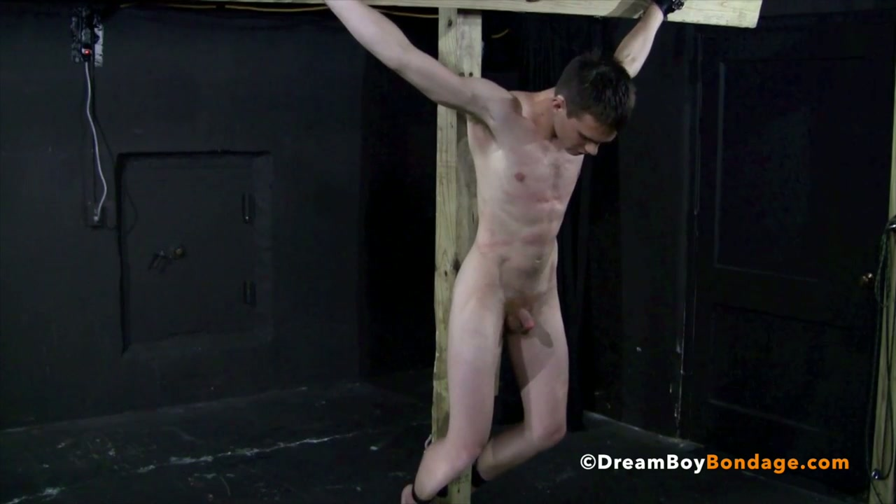 Japan gay bondage movie first time reece