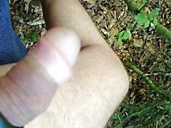Wald und poppers 2