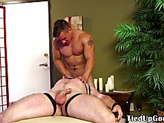 Bdsm dom massaged by sub before blowjob