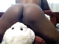 Amateur humps a teddy bear