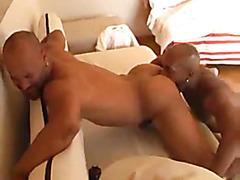 Shaved head black guys fuck